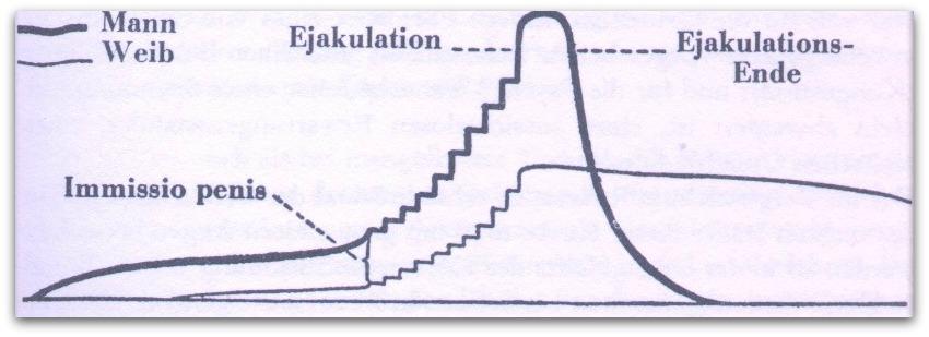 ejakulationsnerven